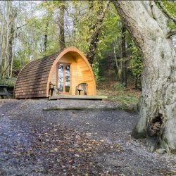 How To Transform Your Campsite into a Luxurious Glamping Experience