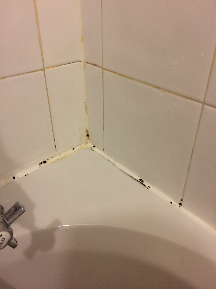 Remove Mould from Bathroom